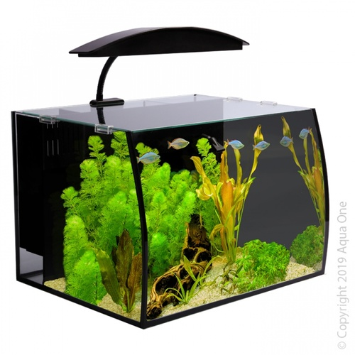 Aqua One Arc 30 Aquarium